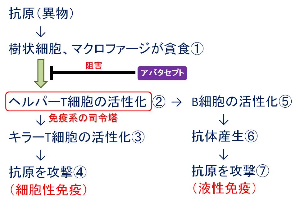 f:id:takyamamoto:20170622115008p:plain