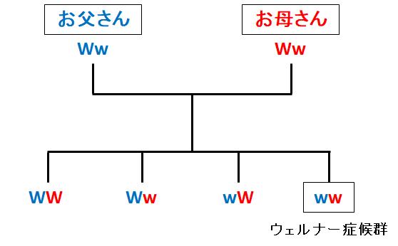 fidtakyamamoto20170627125222pplain