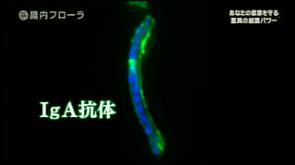 f:id:takyamamoto:20170718103510p:plain