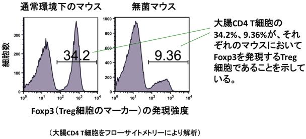 f:id:takyamamoto:20170801113843p:plain