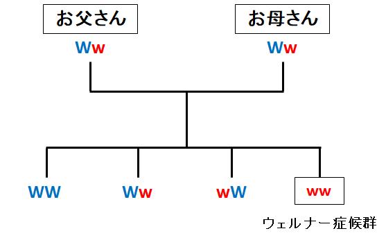 f:id:takyamamoto:20180129200250p:plain