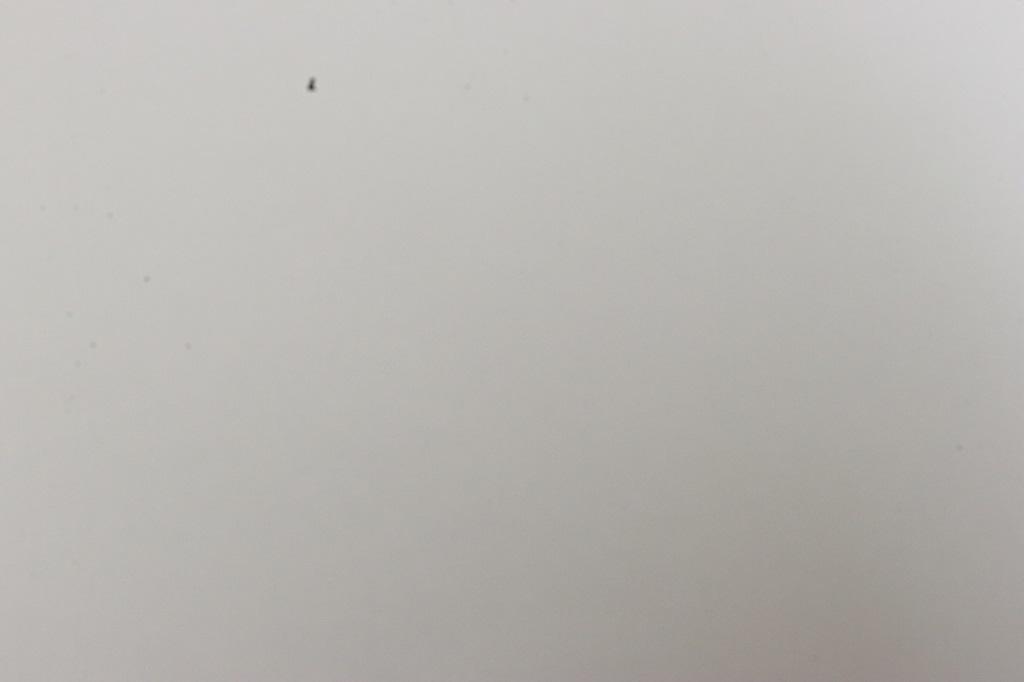 f:id:tama-9:20170706015820j:plain