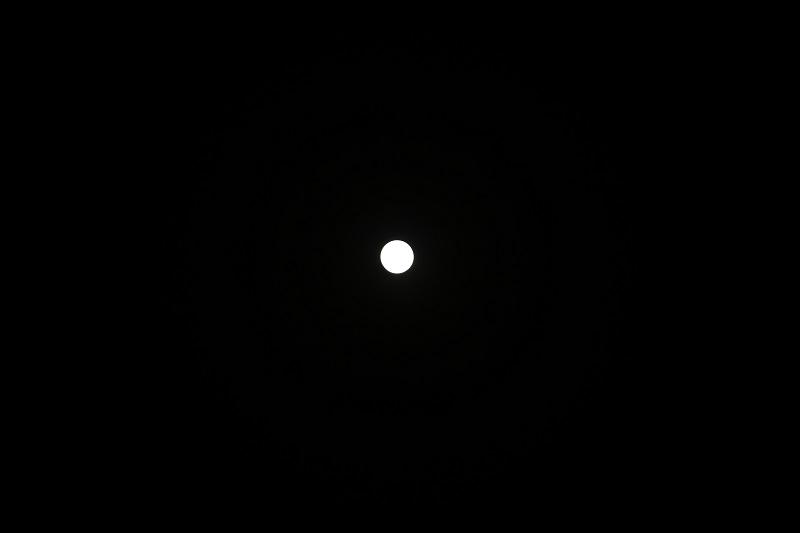f:id:tama-9:20180331222805j:plain
