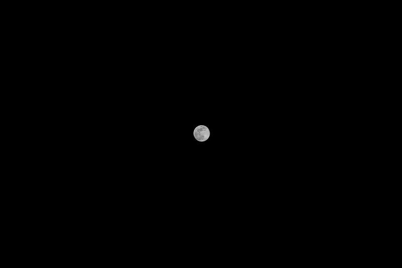 f:id:tama-9:20180331222842j:plain