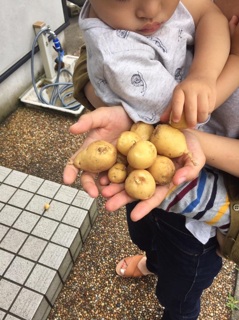 f:id:tama-fuku:20160707130248j:plain