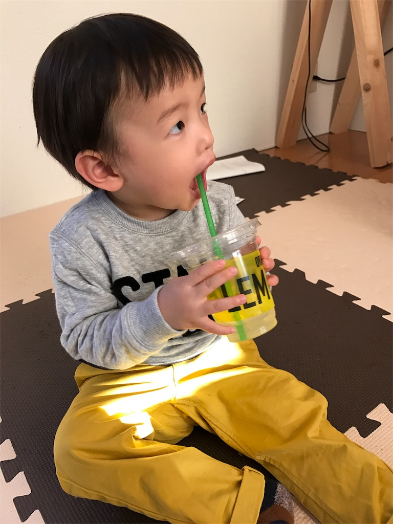 f:id:tama-fuku:20170128070556j:image