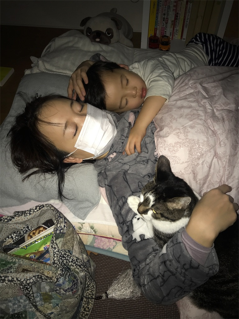 f:id:tama-fuku:20180110224503j:image