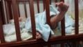 今日の赤ちゃん