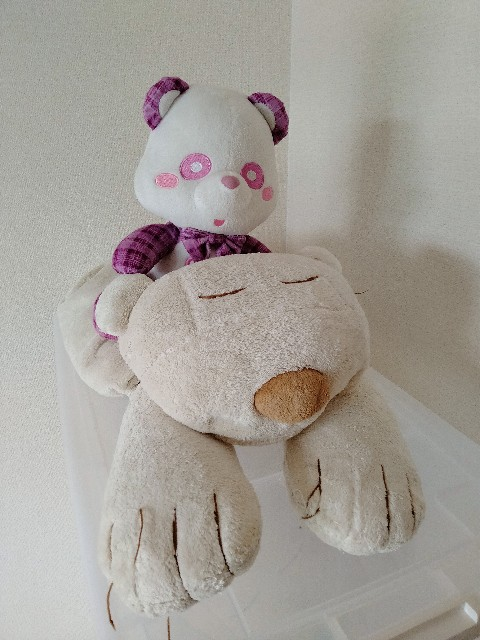 f:id:tamabashimai:20210710195253j:image