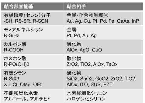 f:id:tamagoyaki1999:20190912005727p:plain