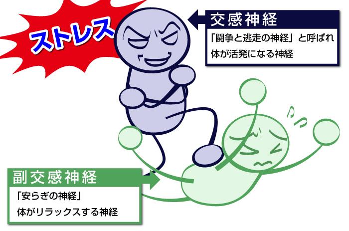 f:id:tamaki-tamaki:20160827080143j:plain