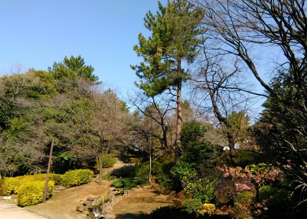 f:id:tamaki-tamaki:20180317105304j:plain