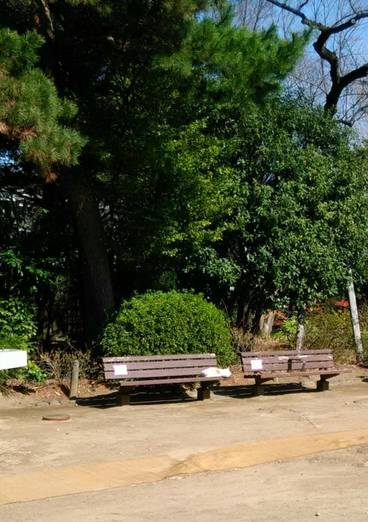 f:id:tamaki-tamaki:20180317110527j:plain