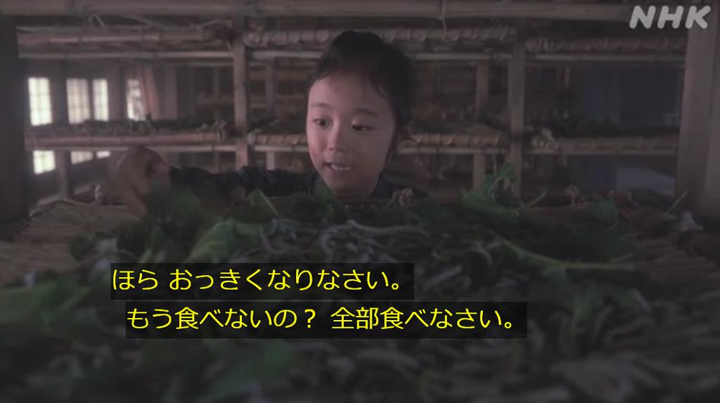 f:id:tamaki_sunny_cloudy:20210220114522j:plain