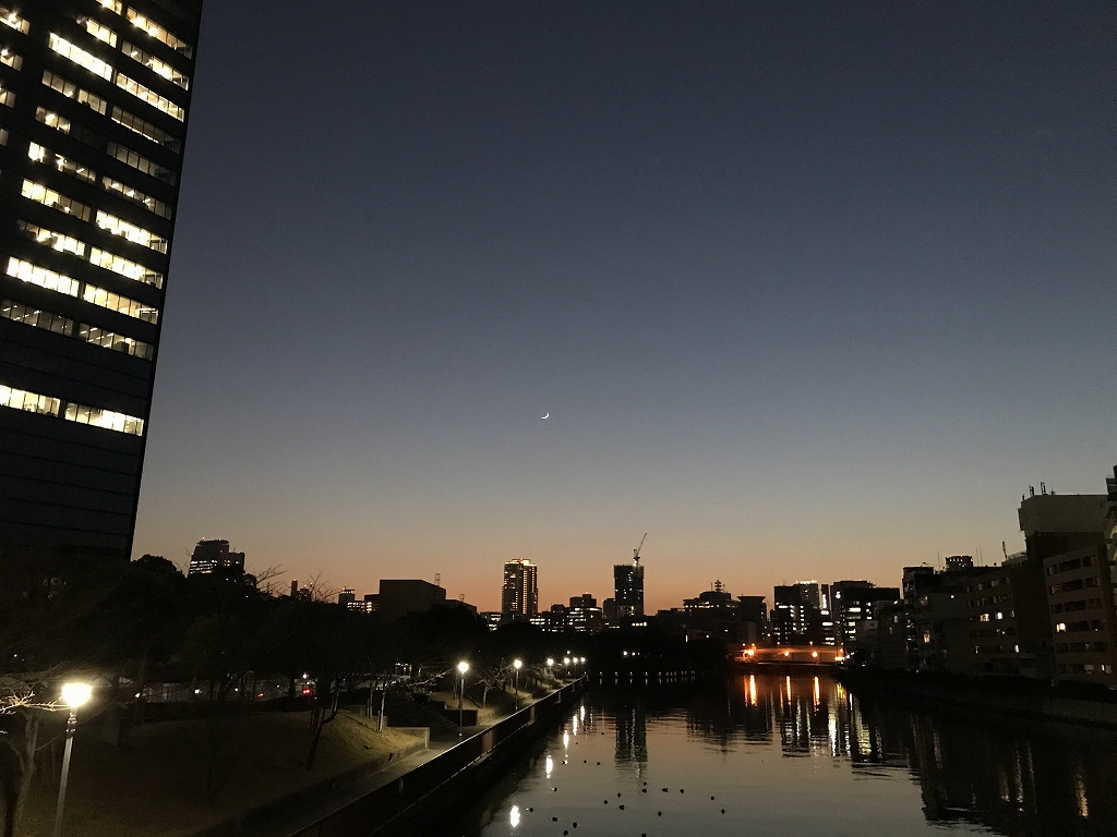 f:id:tamaki_sunny_cloudy:20210521225545j:plain