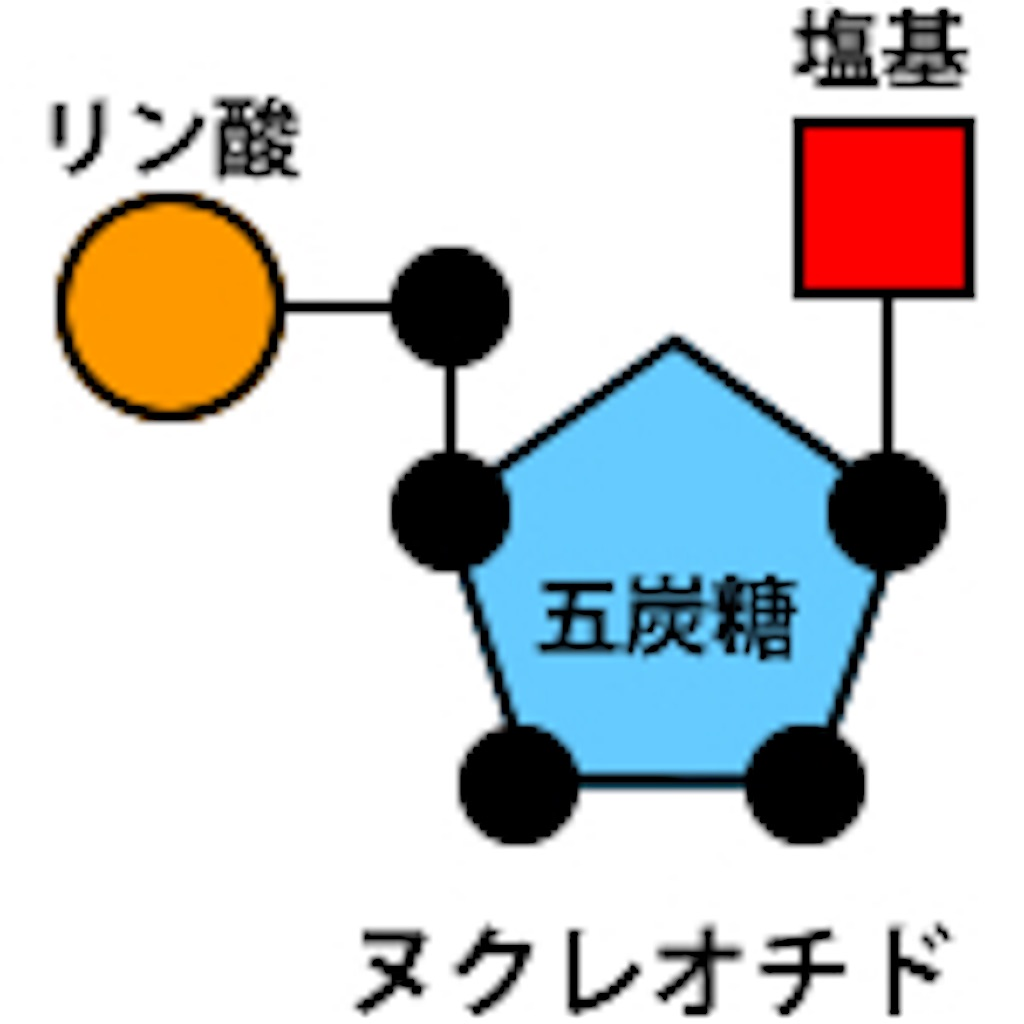 f:id:tamakoro1k:20161226070645j:image