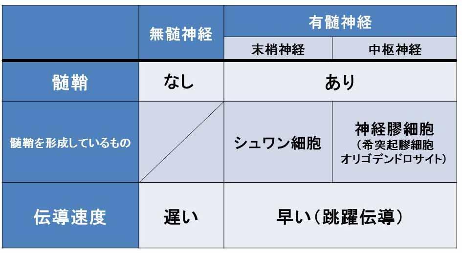 f:id:tamakoro1k:20170813034846j:plain