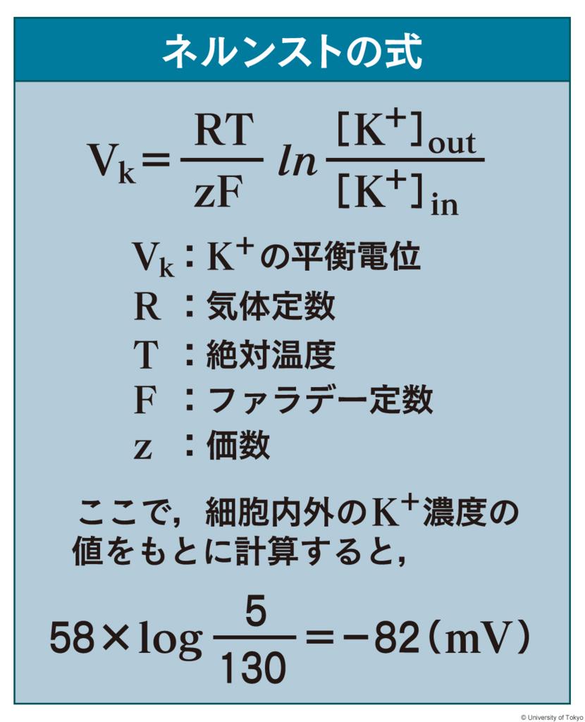 f:id:tamakoro1k:20170822113116j:plain