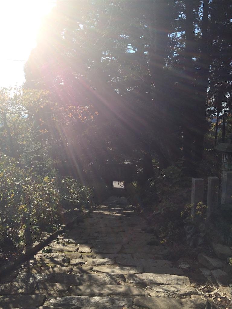 f:id:tamakushi13:20170401002007j:image