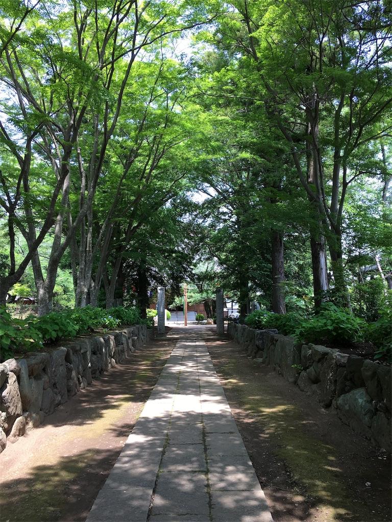 f:id:tamakushi13:20180527181740j:image