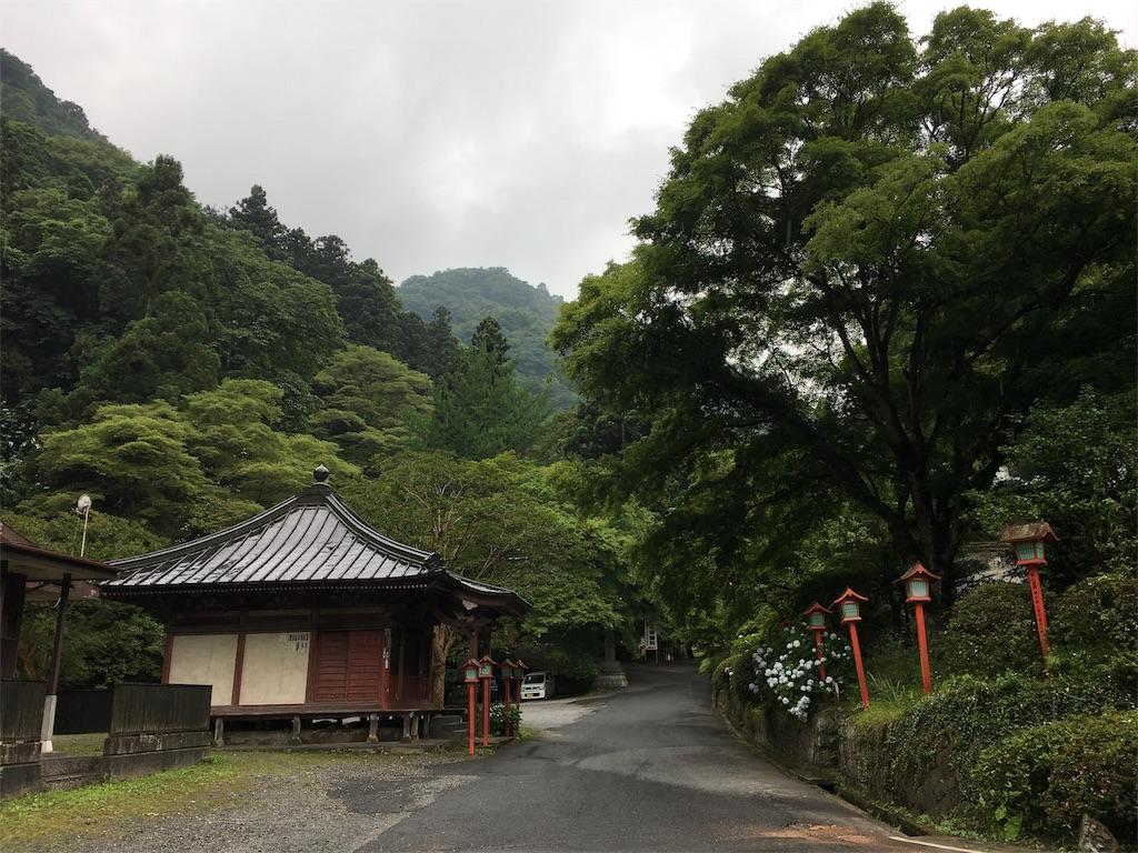 f:id:tamakushi13:20180703223936j:image