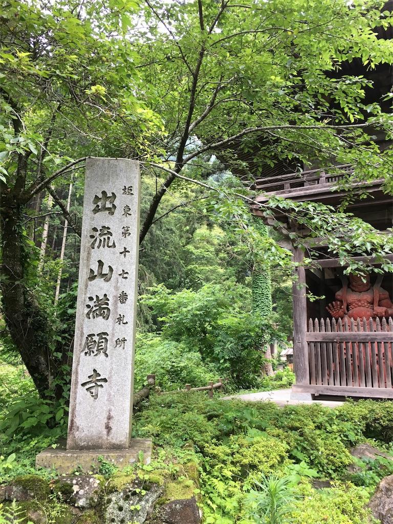f:id:tamakushi13:20180703224012j:image