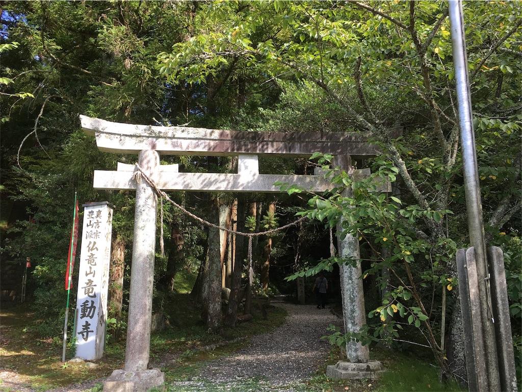 f:id:tamakushi13:20180818195946j:image