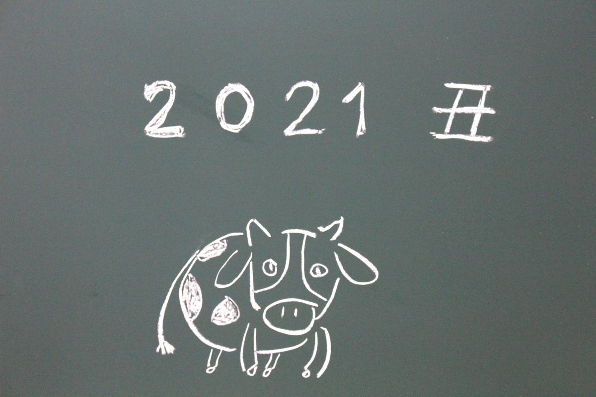f:id:tamaminao:20210101195040j:plain