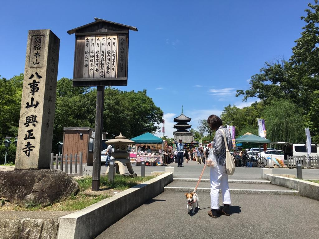 f:id:tamanaosakura:20160630234111j:plain