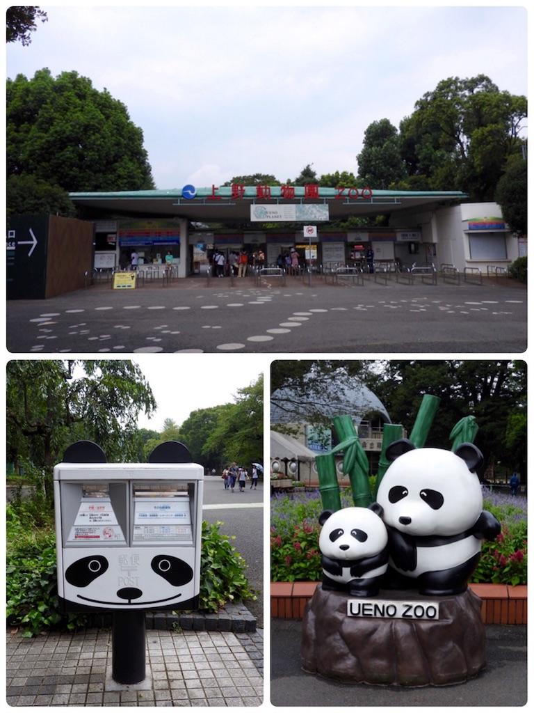 f:id:tamanaosakura:20160822173015j:image