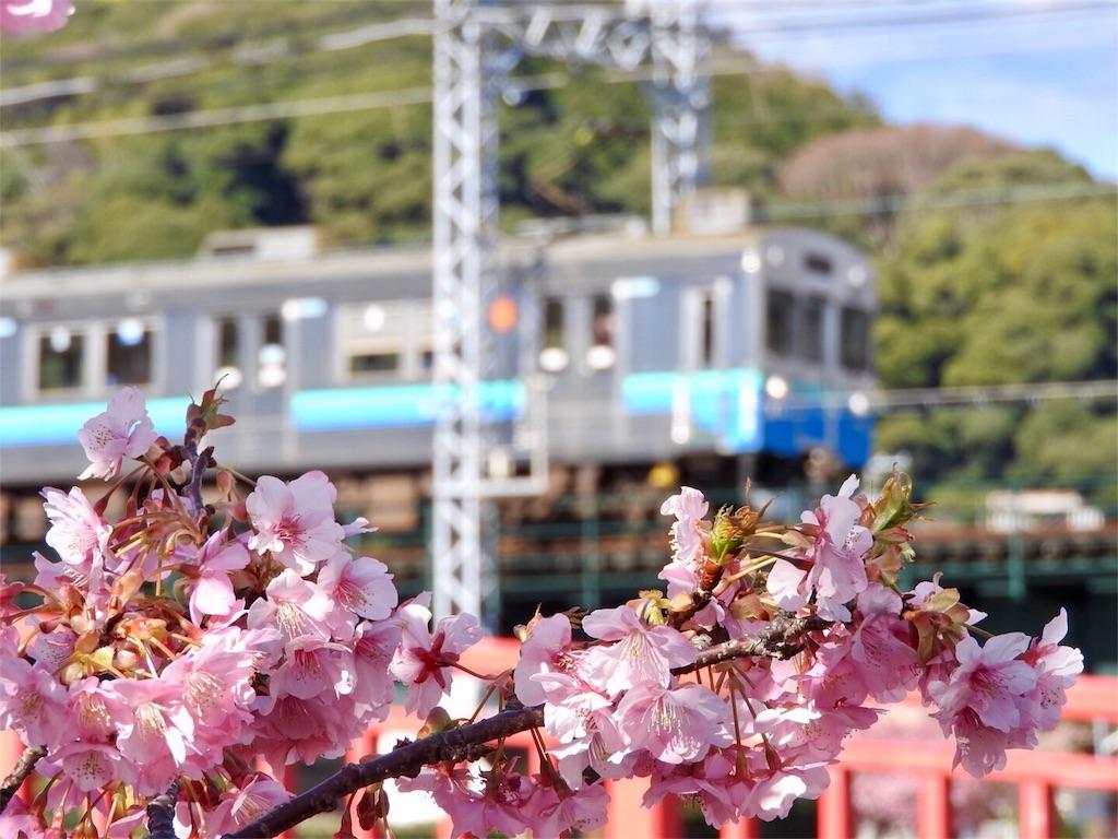 f:id:tamanaosakura:20170221161333j:image