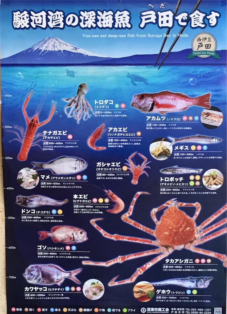 f:id:tamanaosakura:20170222075154j:image