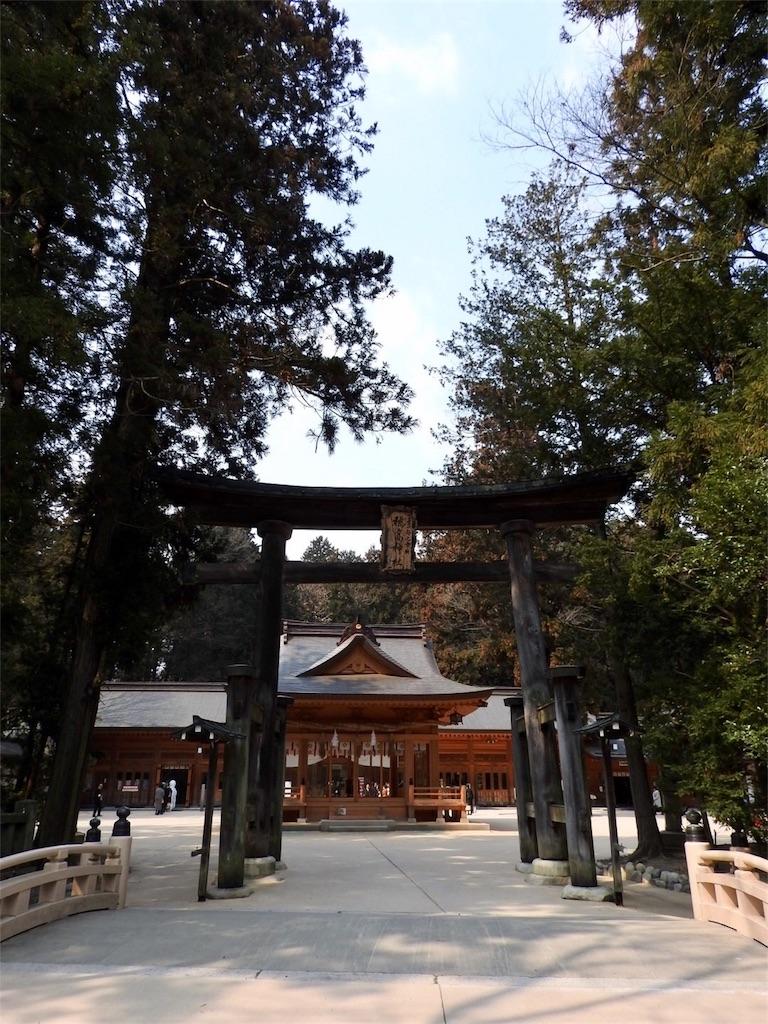 f:id:tamanaosakura:20170401140300j:image