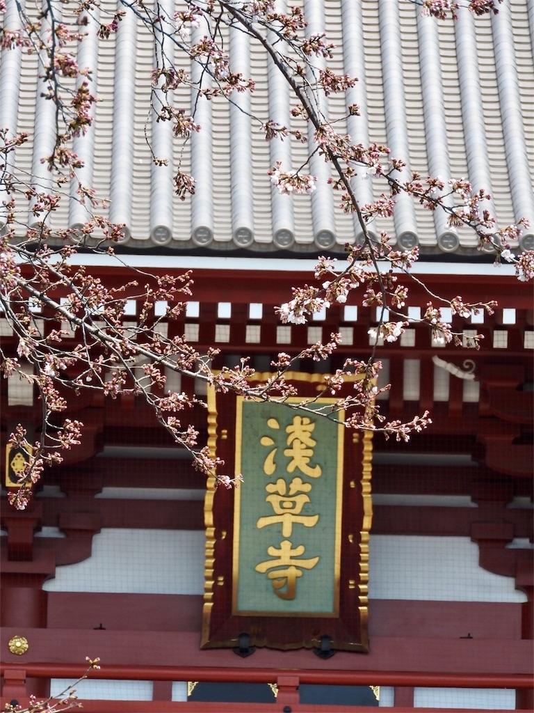 f:id:tamanaosakura:20170405180458j:image