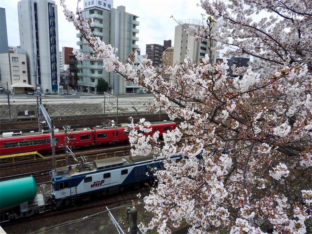 f:id:tamanaosakura:20170426085405j:image