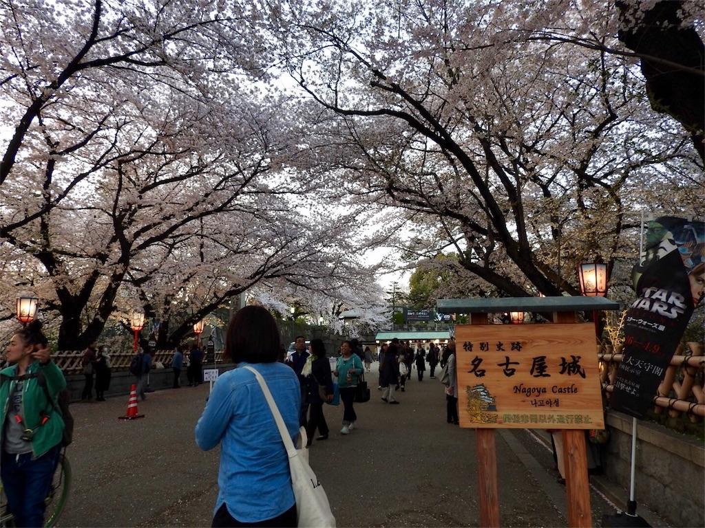 f:id:tamanaosakura:20170603182250j:image