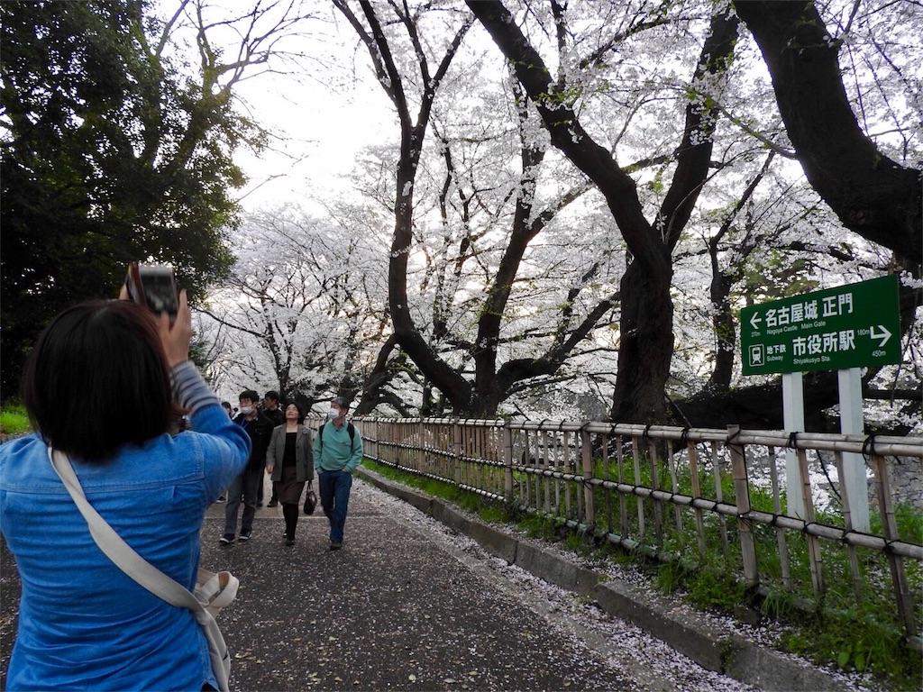 f:id:tamanaosakura:20170603182330j:image