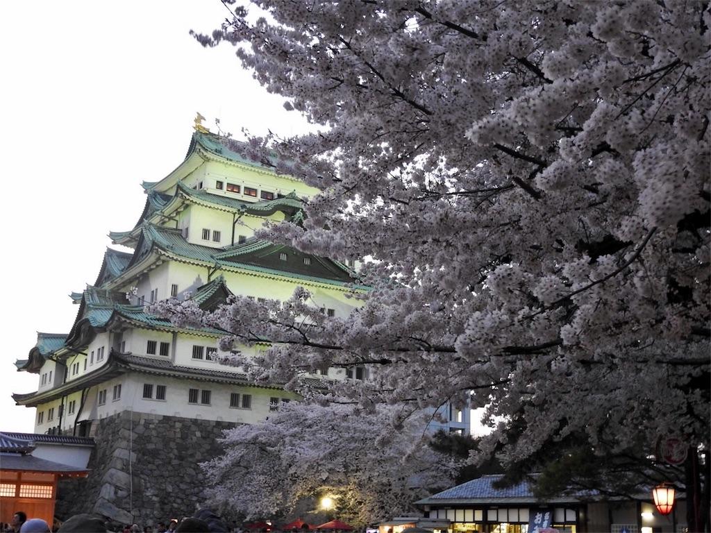 f:id:tamanaosakura:20170603182733j:image