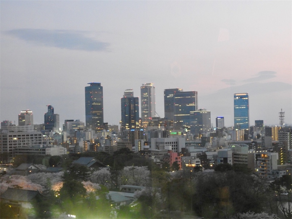 f:id:tamanaosakura:20170603182828j:image