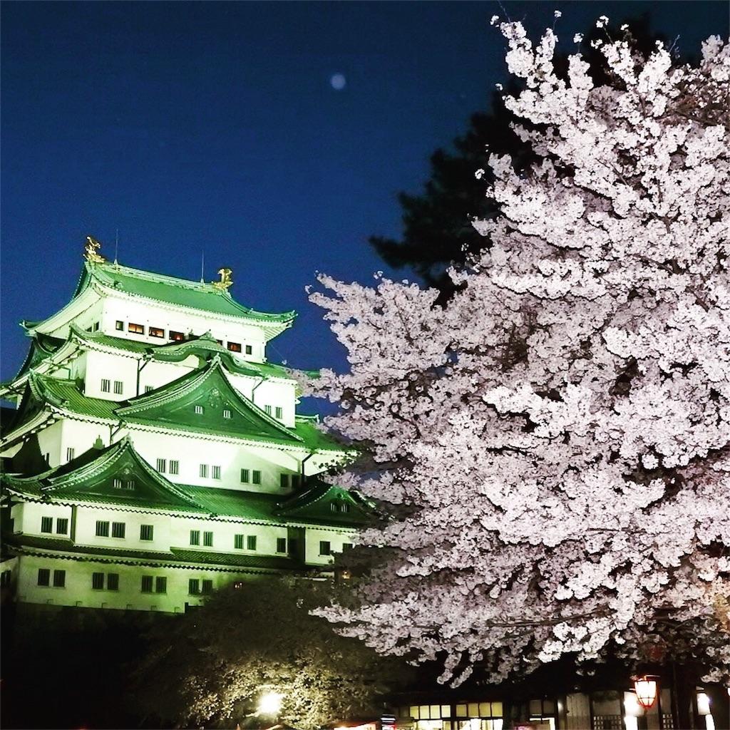 f:id:tamanaosakura:20170603182923j:image
