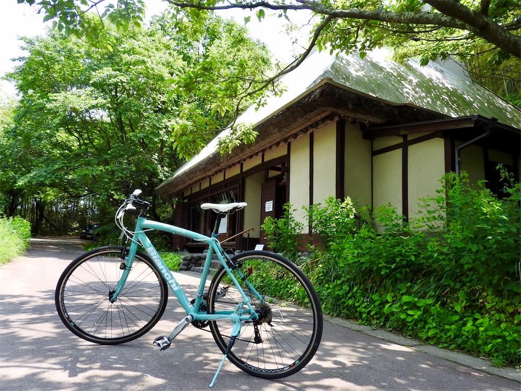 f:id:tamanaosakura:20170605205248j:image