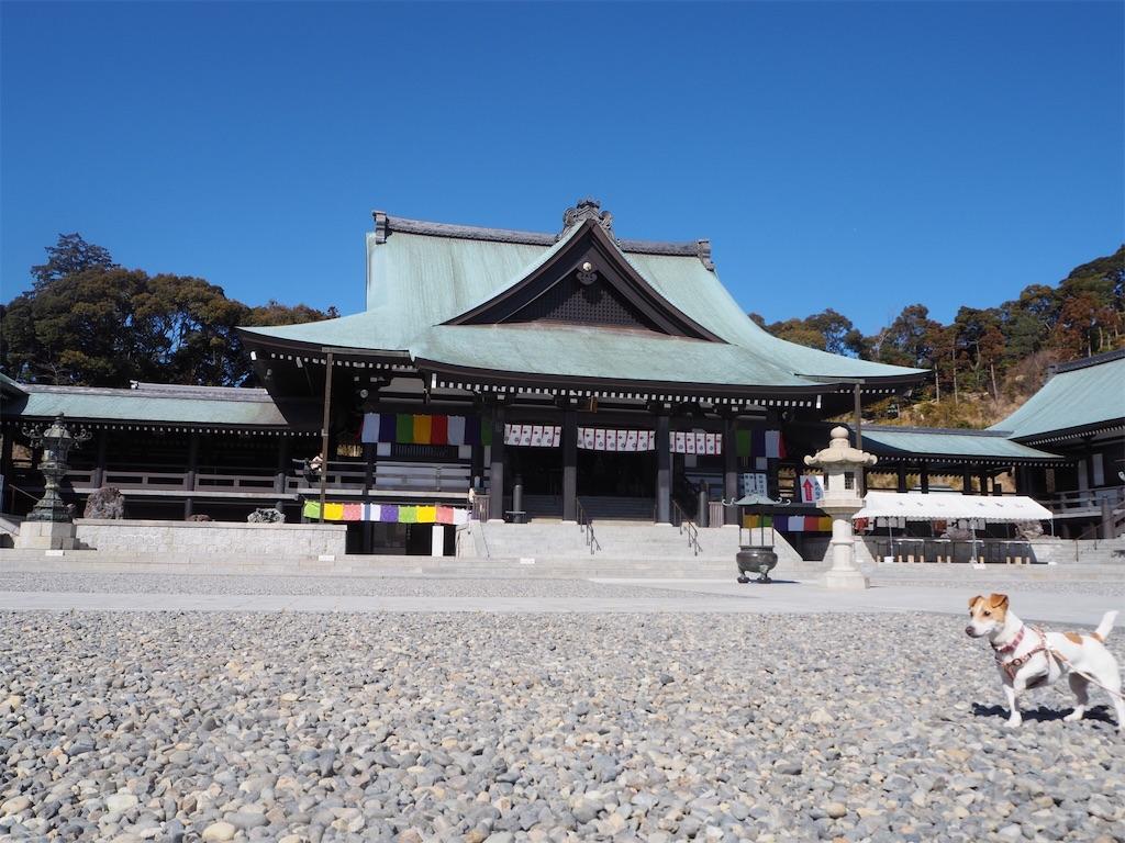 f:id:tamanaosakura:20180219062557j:image