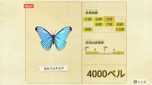 f:id:tamansa:20200324212755j:plain