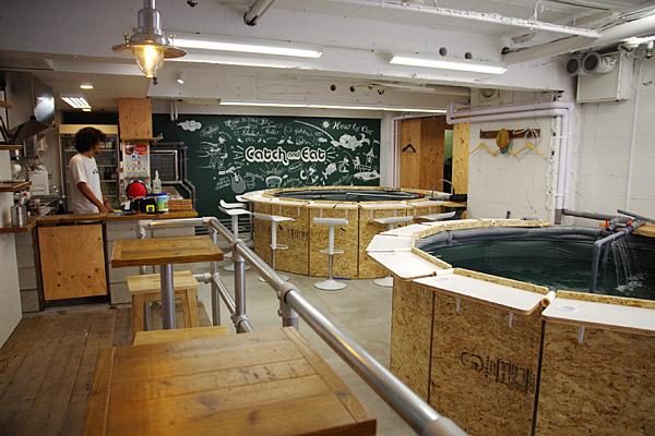 「つりぼりカフェ」の画像検索結果