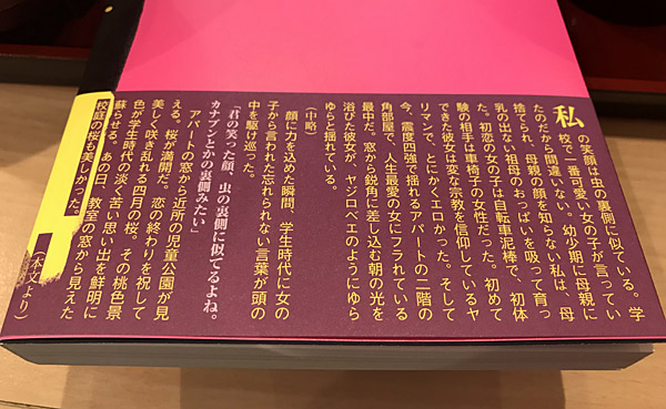 f:id:tamaokiyutaka:20180205143037j:plain