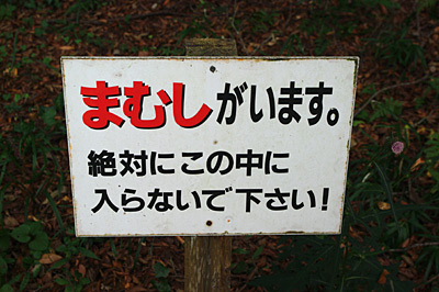 f:id:tamaokiyutaka:20180209015424j:plain
