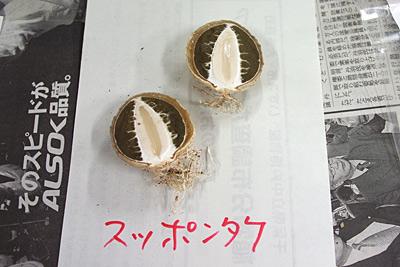 f:id:tamaokiyutaka:20180209015743j:plain