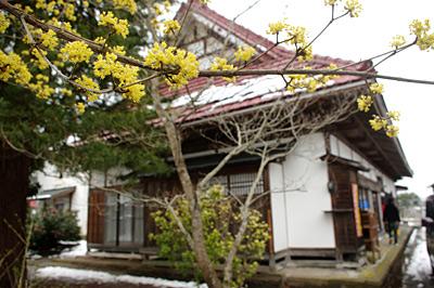 f:id:tamaokiyutaka:20180209145332j:plain