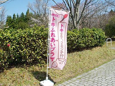f:id:tamaokiyutaka:20180305225527j:plain
