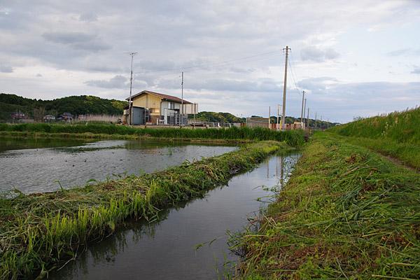 f:id:tamaokiyutaka:20180507010016j:plain
